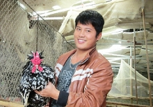 the man who brought royal chickens to northern vietnam