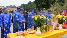 various activities held at thang long citadel to welcome tet