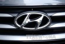 hyundai considers plant in vietnam or indonesia