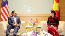 na chairwoman receives malaysias senate president