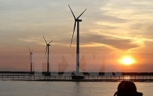 bac lieu attracts investors for renewable energy