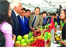 moit helps expand farm produce exports