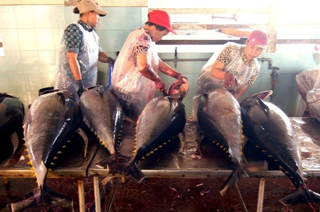 tuna exporters aim for 8 percent increase this year
