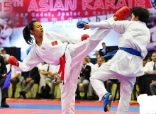 vn karatedo target four golds at sea games