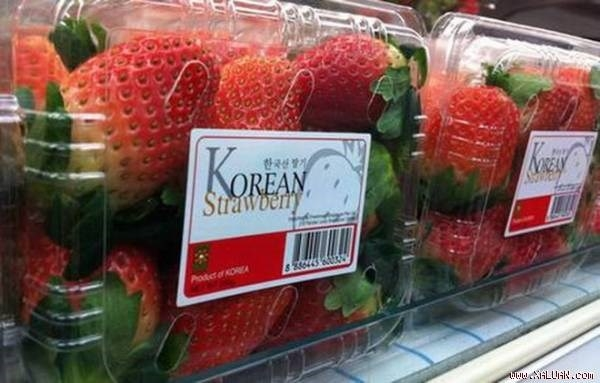 rok strawberry imports face new rules