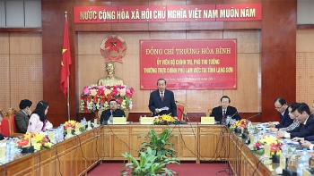 deputy pm asks for measures to develop enterprises in lang son