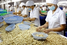 hong kong gateway for vietnamese products reach out to world