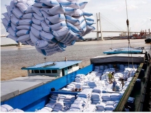 rice export surges 742 percent in january