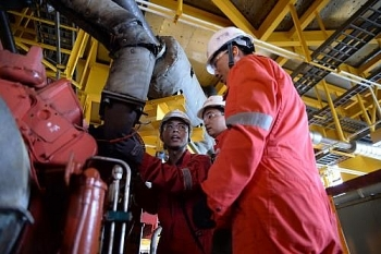 petrovietnam eyes larger reserves in 2018