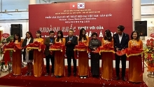 vietnam rok art exhibition kicks off