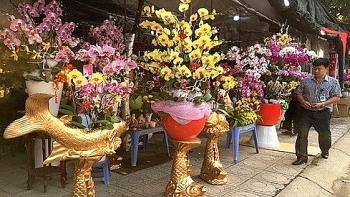 vietnam imports flowers worth us 18 million for tet
