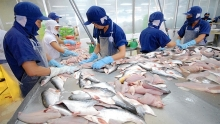 aquatic sector aims at us 10 billion export revenue in 2019