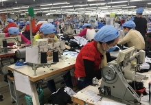 garment fishery firms plan production growth this year