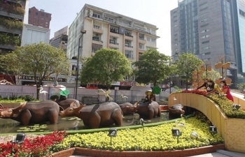 nguyen hue flower street uploaded online for first time