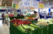 hcm city consumer prices see slight rise after tet holiday