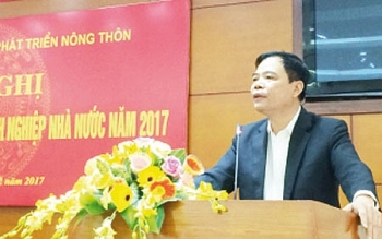 restructuring imperative of state owned agricultural firms