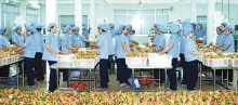 vietnamese efforts in japan bear fruit