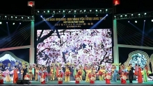 flower festivals open in ha long and son la