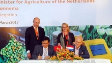 vietnam learns netherlands experience in developing sustainable agriculture