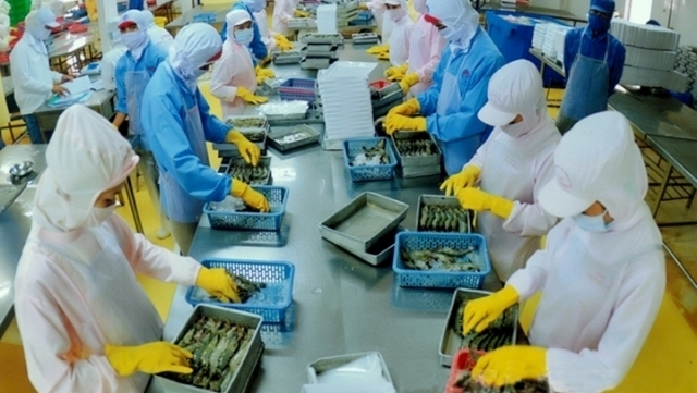 shrimp exports expected to reach us 5 billion by 2020