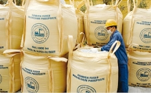 vadfco shining brand on fertilizer market