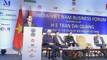 vietnam wants deeper investment cooperation with india president