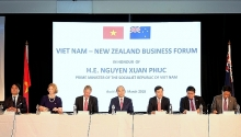 pm attends vietnam new zealand business forum