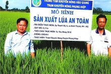 hau giang to pilot smart rice cultivation