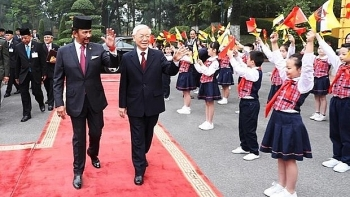 vietnam brunei issue joint statement on comprehensive partnership establishment