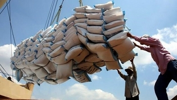 pm orders suspension of signing rice exporting contracts