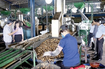binh phuoc a decade of industrial promotion