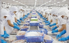 export of aquatic products hits us 167 billion in first quarter