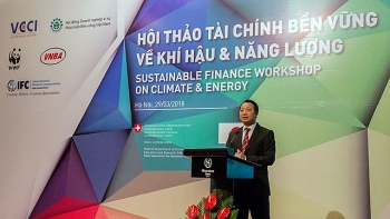 financial sector helps boost transition for low carbon economy experts