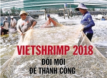 technology exhibition of vietnam shrimp sector to run in bac lieu