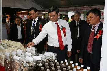 regional trade fair highlights products of northwest provinces