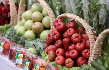 march cpi falls 021 percent month on month