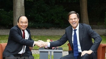 prime minister of netherlands to visit vietnam
