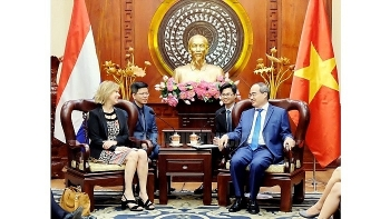 hcm city leader meets dutch infrastructure minister