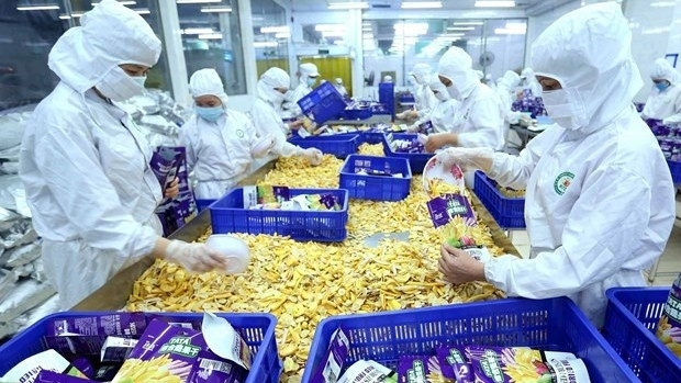 vietnam has advantages in exports to romania