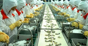 31 vietnamese shrimp exporters free from us antidumping duties