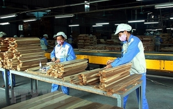 forestry product exports rise by nearly 18 pct in first four months