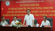 vietnam rubber group urged to aim for us 10 billion revenues