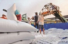 vietnamese pm allows resumption of rice export