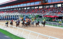 dai nam racecourse inaugurated in binh duong