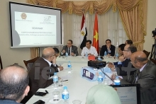 seminar highlights prospect of vietnam egypt ties in cairo