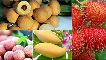 door opened for vietnams vegetable and fruit exports to uae