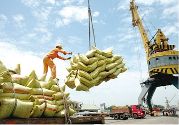 hopeful first quarter results for rice exporters