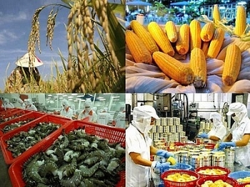 criteria for monitoring and evaluating agricultural restructuring issued