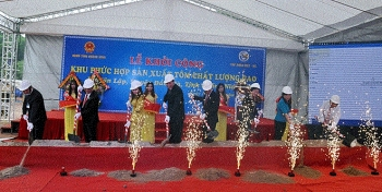 quang ninh builds high quality shrimp breeding complex