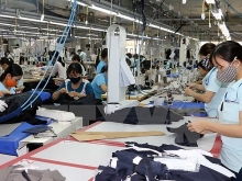 path to eu widened for vietnamese garments textiles